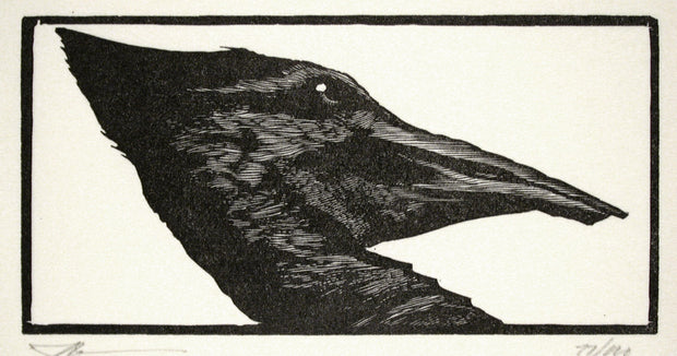 Woodpecker from Bestiaire D'Amour by Barry Moser - Davidson Galleries