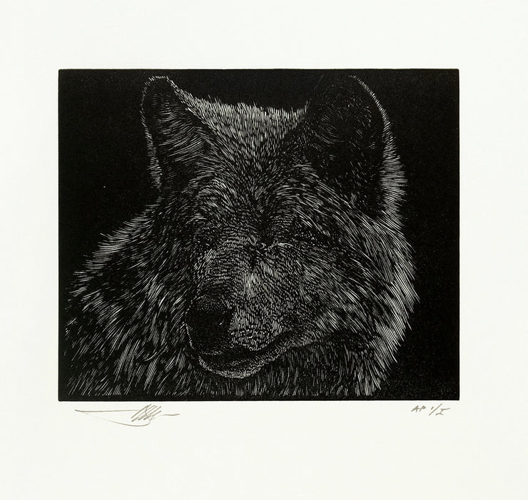 Blind Wolf by Barry Moser - Davidson Galleries