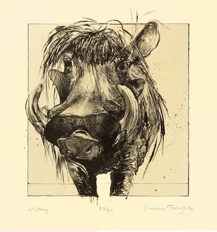 Warthog by Caroline Thorington - Davidson Galleries