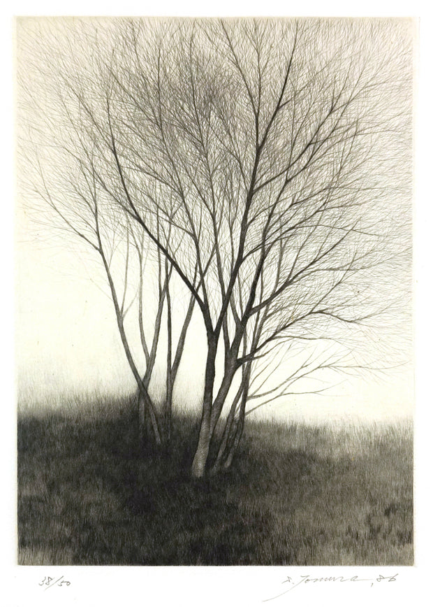 Twilight by Shigeki Tomura - Davidson Galleries