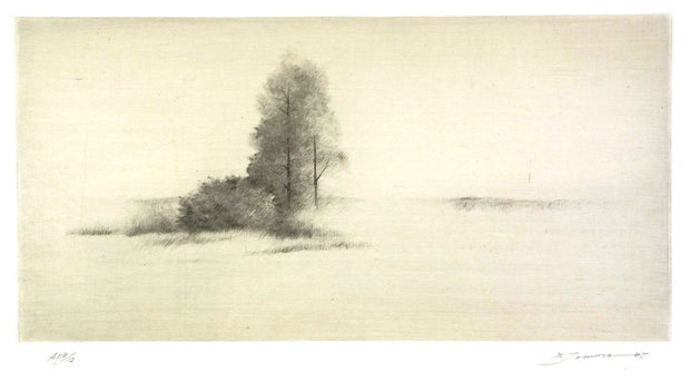 A Mist by Shigeki Tomura - Davidson Galleries