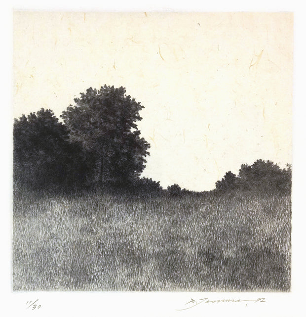 A Forest, Light and Shade I by Shigeki Tomura - Davidson Galleries