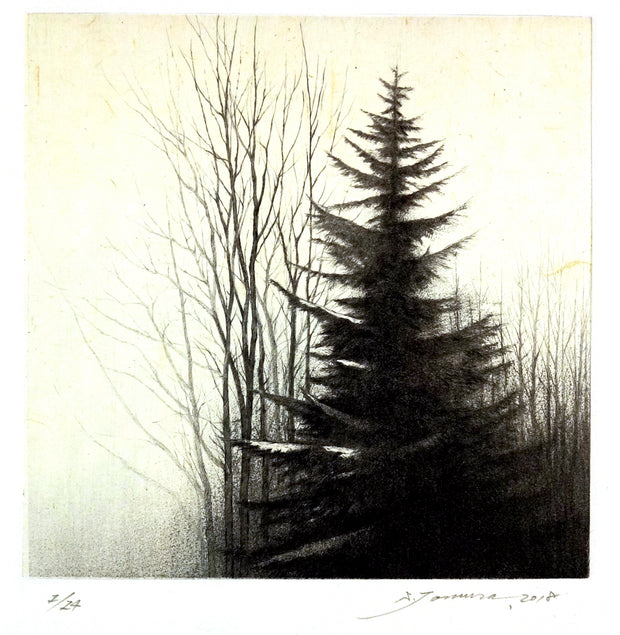 40 N. Latitude IV, Winter by Shigeki Tomura - Davidson Galleries