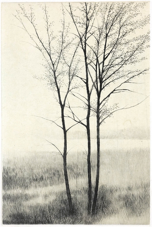 End of Winter II by Shigeki Tomura - Davidson Galleries