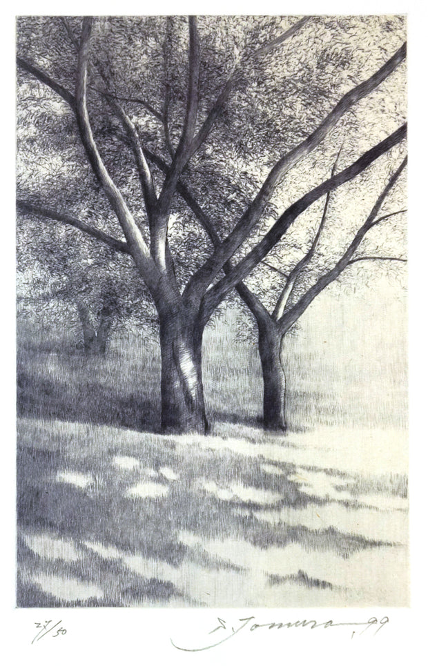 Shadows, in Summer II by Shigeki Tomura - Davidson Galleries