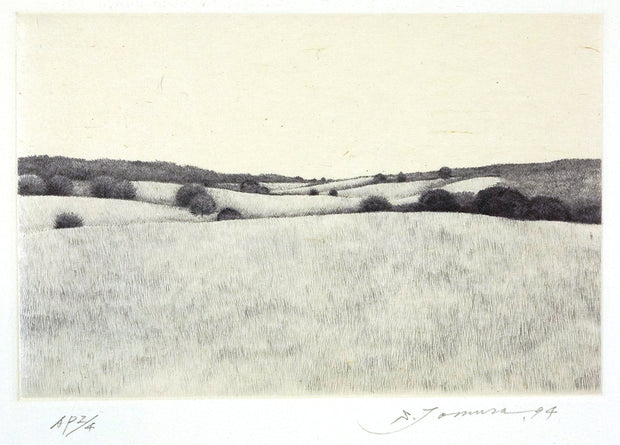 A Hill in Summer by Shigeki Tomura - Davidson Galleries