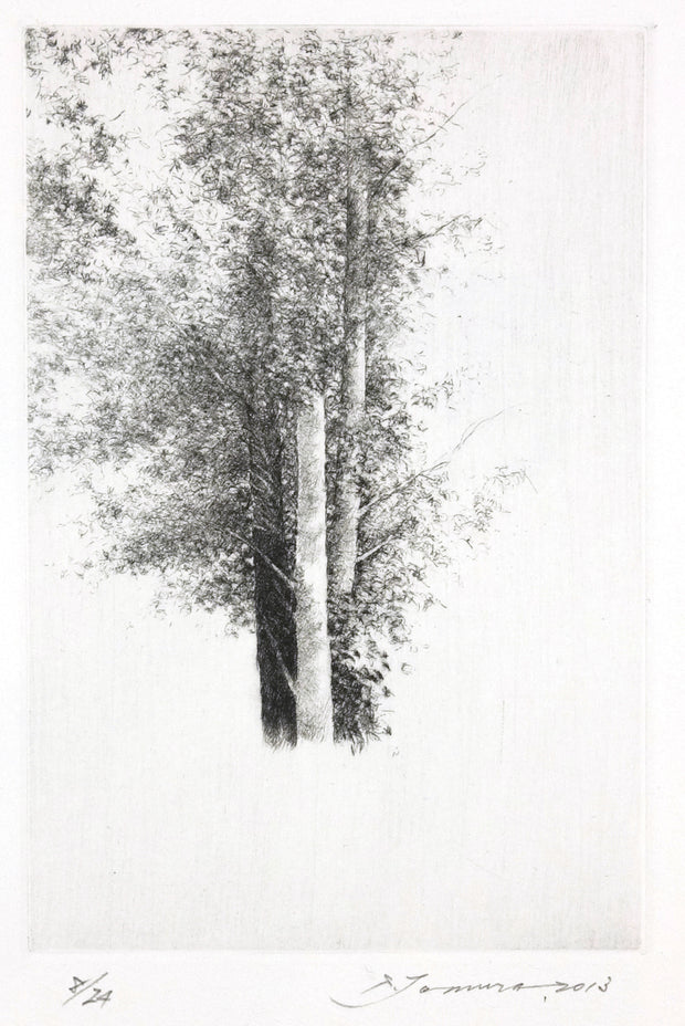 Nature, Summer 12 by Shigeki Tomura - Davidson Galleries
