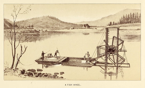 A Fish Wheel (On the Columbia River) by Maps, Views, and Charts - Davidson Galleries