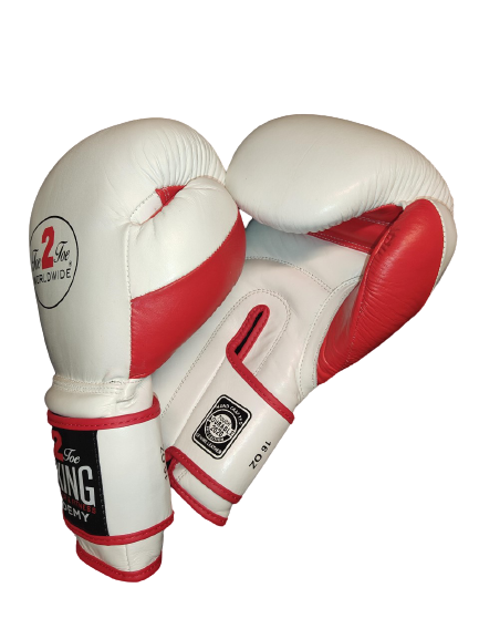 TOE 2 TOE VELCRO STRAP BOXING GLOVES