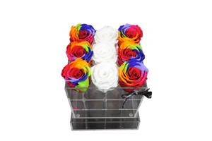 Rainbow White Assortment