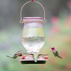 Rose Gold Top-Fill Glass Hummingbird Feeder - Birdly Canada