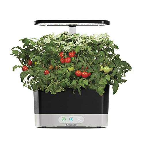 AeroGarden Harvest - Black - Birdly Canada