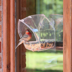 Window Bird Feeder - Birdly Canada