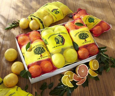 Holiday 6-Pack of Citrus
