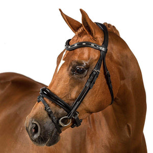 Premium Black Snaffle Bridle 'Astral'