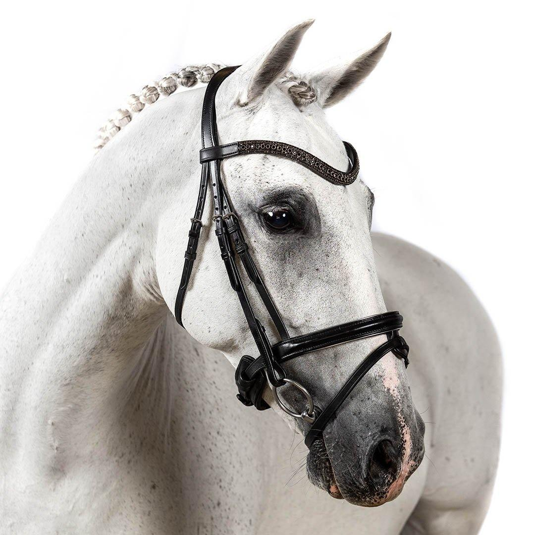 BRI003 BLACK GEL SNAFFLE BRIDLE – ALL ENGLISH DISCIPLINES $194.80-$339.75