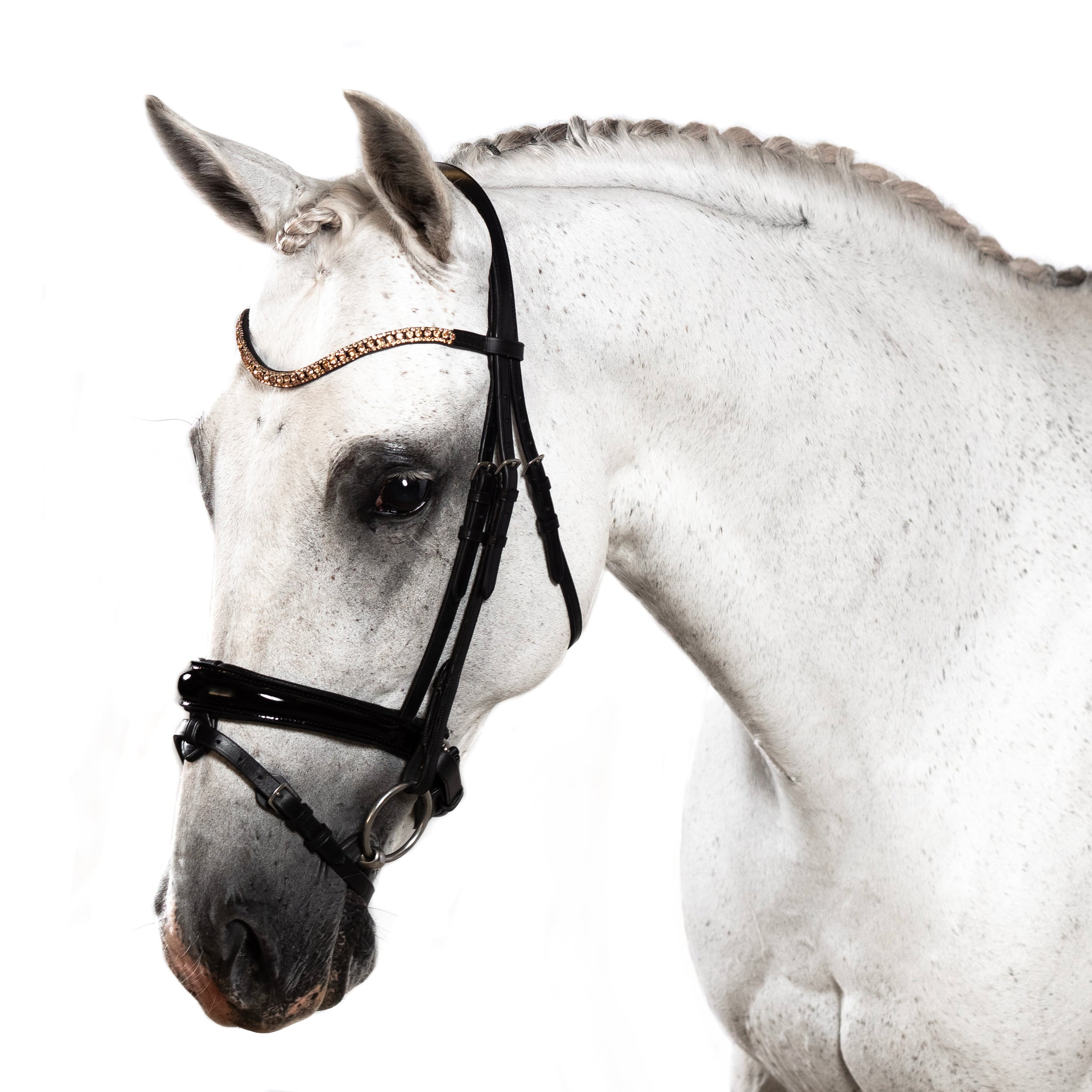 Premium Black Snaffle Bridle 'Ravel'
