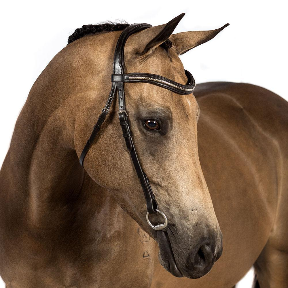 BRI013 HAVANA GEL NOSEBANDLESS BRIDLE $134.85-$249.80