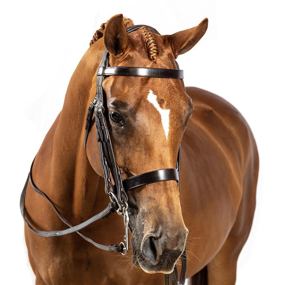BRI011 HAVANA GEL SHOW DOUBLE BRIDLE $224.80-$339.70