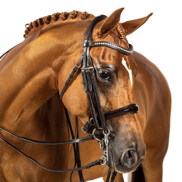 BRI004 HAVANA GEL 2 IN 1 COMBINATION DOUBLE BRIDLE $224.80-$389.70