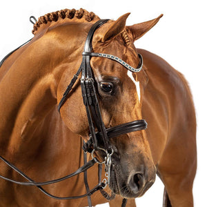 BRI007 HAVANA GEL DOUBLE BRIDLE $224.80-$389.70