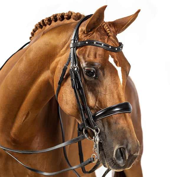 BRI005 BLACK GEL 2 IN 1 COMBINATION DOUBLE BRIDLE - ALL ENGLISH DISCIPLINES $224.80-$389.70