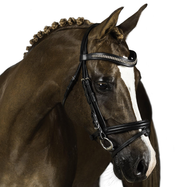 Black Snaffle Bridle 'Vortex'