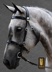 BLACK IN HAND BRIDLE STAINLESS FITTINGS FLAT PATENT BROWBAND - FLAT PATENT NOSEBAND