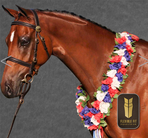 HAVANA IN HAND BRIDLE - BRASS FITTING - RAISED BROWBAND - RAISED NOSEBAND