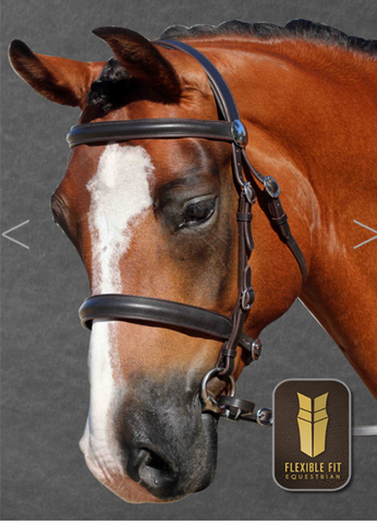 HAVANA IN HAND BRIDLE STAINESS FITTING RAISED BROWBAND - RAISED NOSEBAND