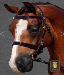 HAVANA IN HAND BRIDLE STAINLESS FITTING FLAT PATENT BROWBAND - FLAT PATENT NOSEBAND - Flexible Fit Equestrian Australia