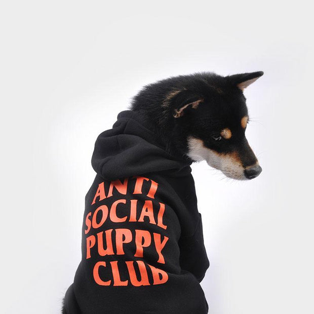ANTI SOCIAL PUPPY CLUB PET HOODIE-Pawlenciaga Pets