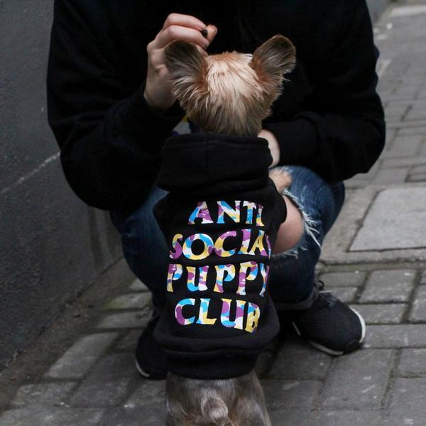 ANTI SOCIAL PUPPY CLUB x BATHING-PUP PET HOODIE-Pawlenciaga Pets