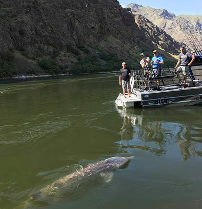 Hells Canyon Adventure Fishing