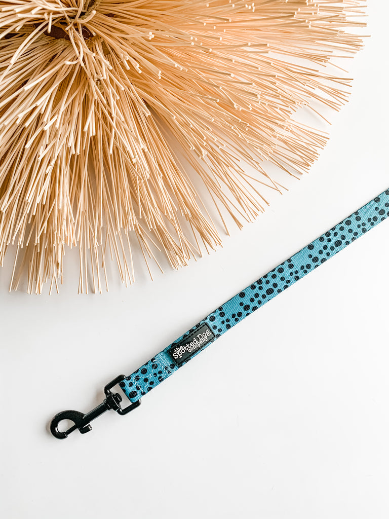 Spotty Dotty Dog Lead