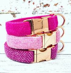 Beitdh Harris Tweed Dog Collar & Lead