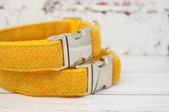 Eilidh Harris Tweed Dog Collar & Lead