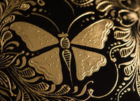 Butterfly, detail of Gold Outlined gourd