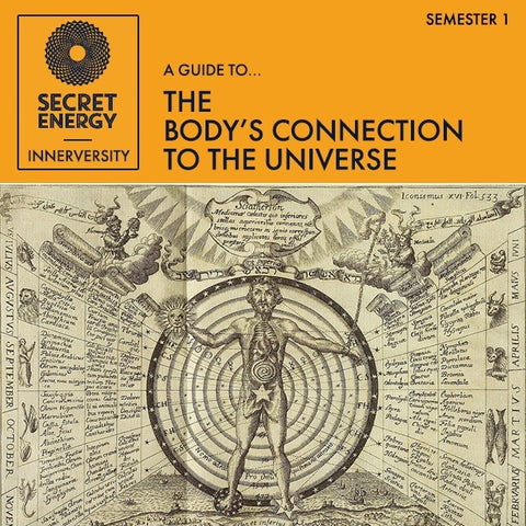 The Body's Connection to the Universe