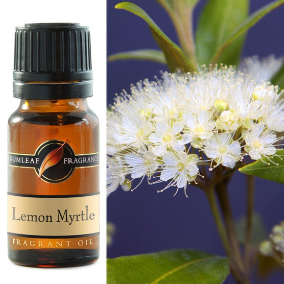 Fragrant Oil, Oil burner, Potpourri, Lemon Myrtle