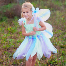 Load image into Gallery viewer, Butterfly Dress with Wings and Wand Set