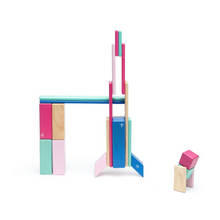 Load image into Gallery viewer, Tegu - 24 Piece Set - Blossom