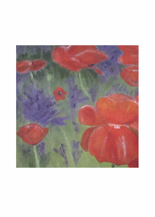 Michelle's Poppies