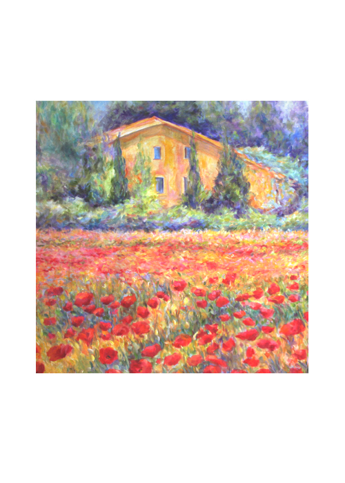 St Remy Poppies