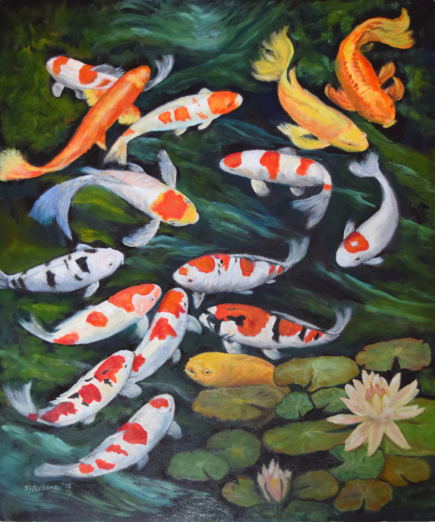 Koi and more Koi!