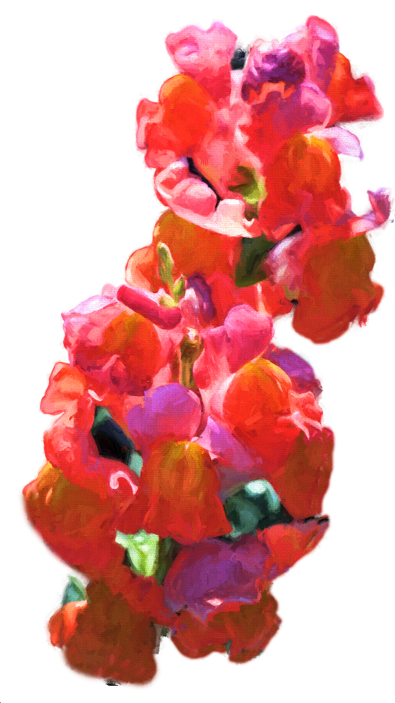 FloatingSnapdragons
