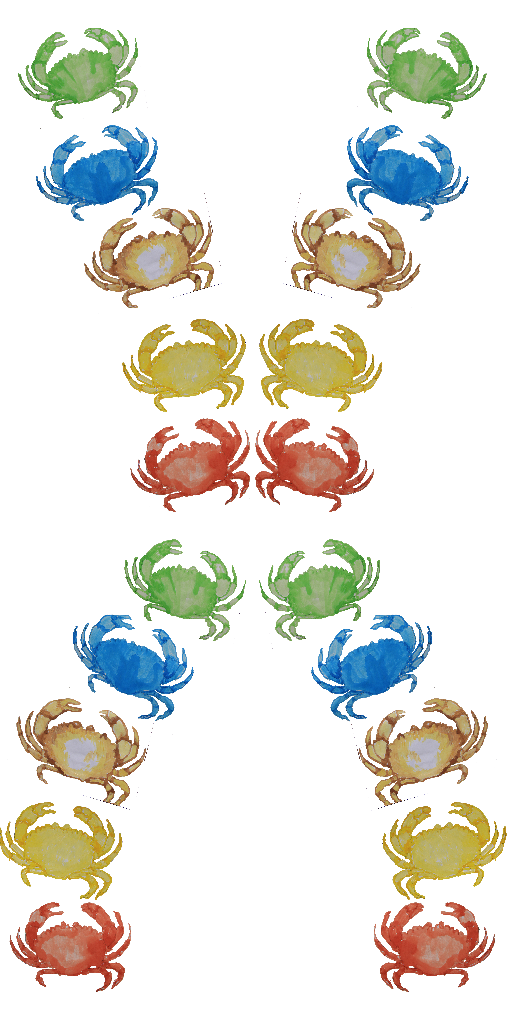 Crab In Your DNA