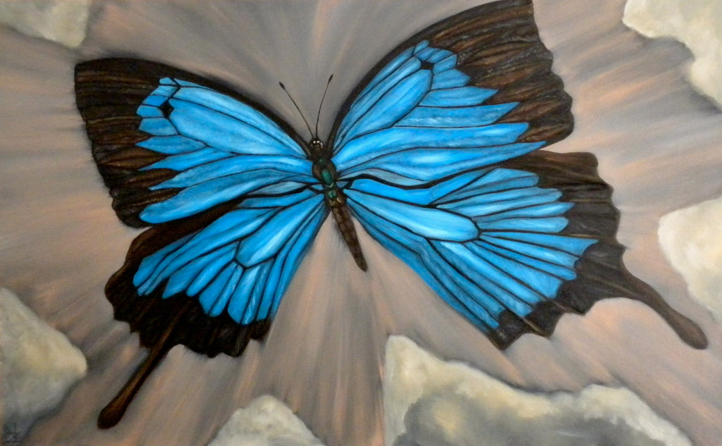 Ulysses Blue Butterfly
