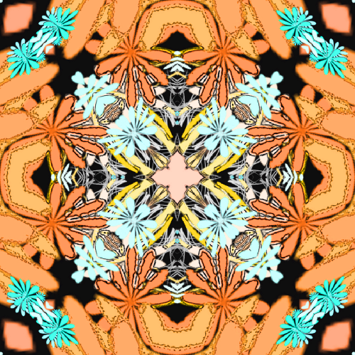 Abstract Peach Floral