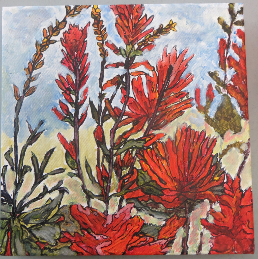 Sun Peaks Indian Paint Brush